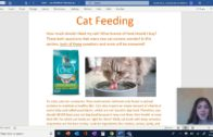 Cassidy-Stopchick-Come-Explore-Cat-Care-with-Cassidy