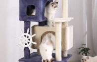 Cat Condo Sisal Scratching Posts   My Pets Care Tips